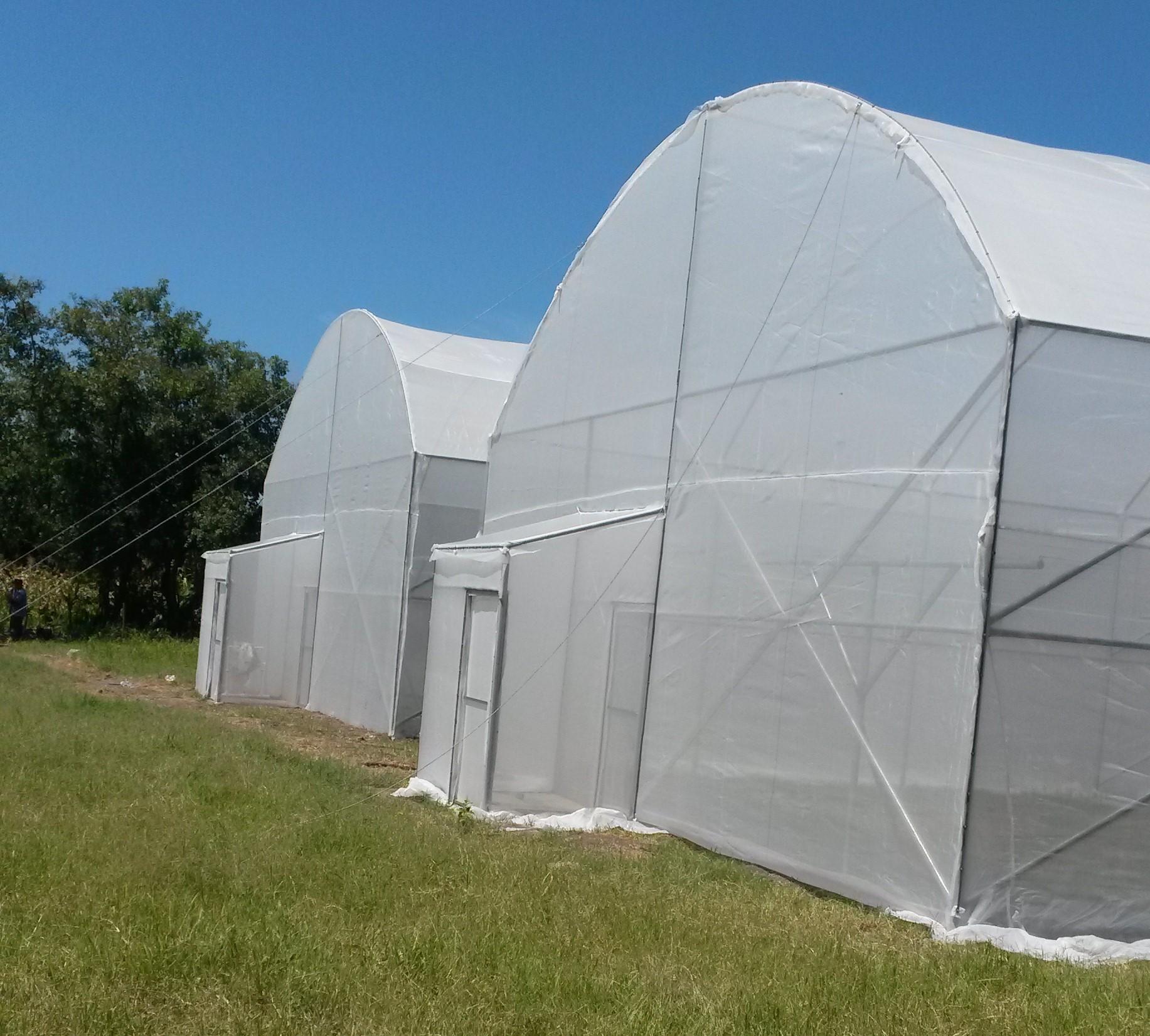 Construccion de invernaderos y casas malla en el salvador for Malla de construccion