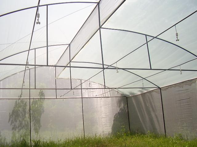 Sistema dec control de temperatura mediante nebulizacion