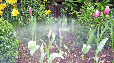 Microaspersion en Jardin