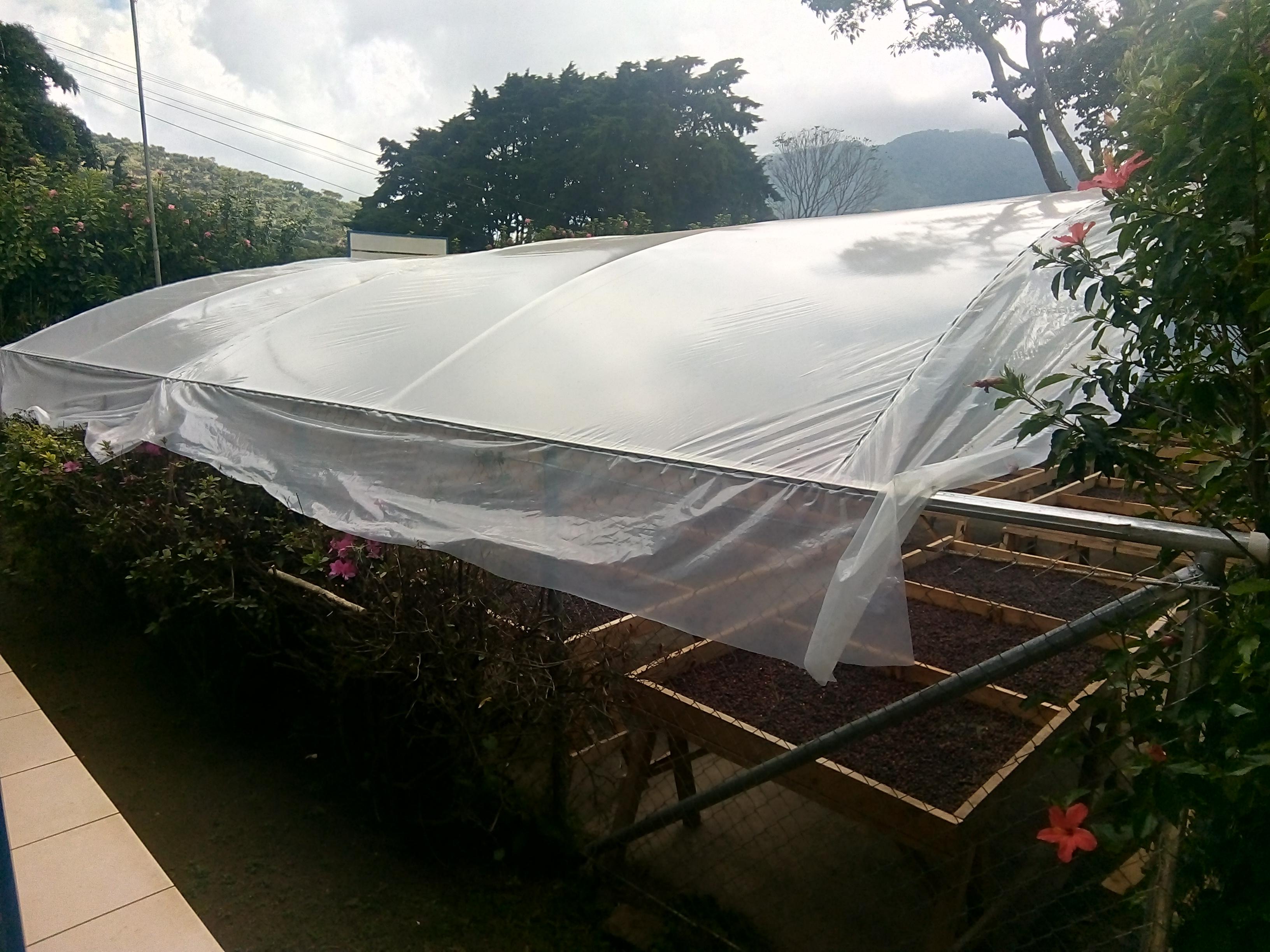 Invernadero de secado con techo curvo
